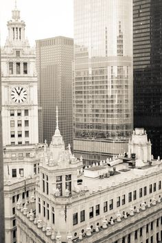 Chicago photography, My Kind of Town Chicago - Wrigley Building Clock  - 8x10 Fine Art Photograph - etsy wall art - chicago art