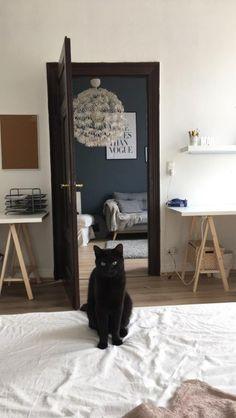 Immer noch die beste Schlafzimmer-Deko! Katze als Mitbewohnerin. #schwarzeKatze #WohnenInAachen #Mitbewohner