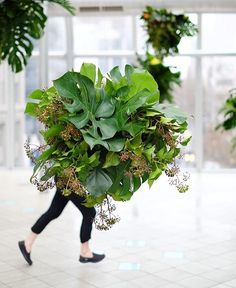 Hard to believe it's been a year since we created our secret garden install for @melbournecentral - such good memories watching people turn into walking plant creatures! #plants #flowers #looseleafprojects #indoorplants
