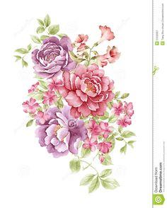 watercolor-illustration-flower-set-simple-white-background-51532027.jpg (1043×1300)