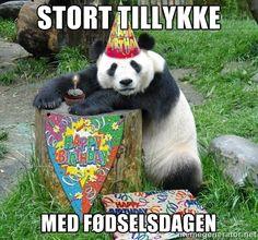 tillykke med fødselsdagen - Google-søgning