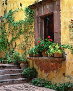 window and stairs love this aged terracotta wall color and the window sill is amazing... love all the geranium pots and the sweet climbers... Perfect courtyard inspiration
