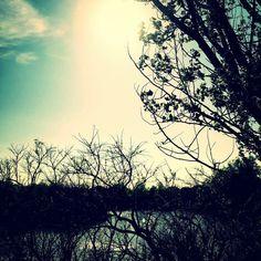 Franklin Pond
