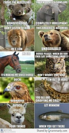 Speaking animal, useful phrases! Could be used as tongue twisters!
