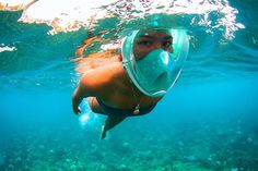 Become a warrior of the water with the Ninja Full Face Snorkeling Mask. Become a warrior of the water with the Ninja Full Face Snorkeling Mask. New Gadgets, Gadgets And Gizmos, Kitchen Gadgets, Clever Gadgets, Must Have Gadgets, Fitness Gadgets, Travel Gadgets, Cool Technology, Technology Gadgets