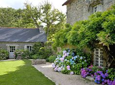 Simple but beautiful garden - Wisteria, Hydrangeas and Roses