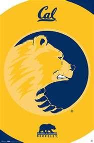 Cal Berkeley Golden Bears Football Logo Sports Posters