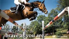 REPIN if your horse gives you the courage be brave!