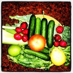 """RAW:        """"Saturday In The Park""""... I think it was the Juice of July:    Kale, Celery, Cucumbers, Tomato, Radishes, Spinach,   Lemon, and Lime"""