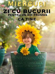 Motivation, Day, Flowers, Movies, Movie Posters, Films, Film Poster, Cinema, Movie