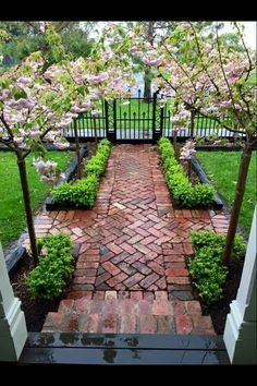 Great materials speak for themselves in garden designs. This is a beautiful brick path. Such a rich color. Could stand on its own or be complimented with landscape design.