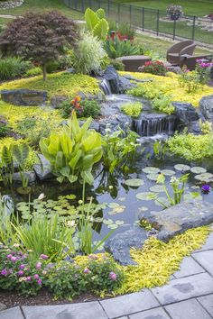 Gorgeous Backyard Ponds and Water Garden Landscaping Ideas (55) #watergardens