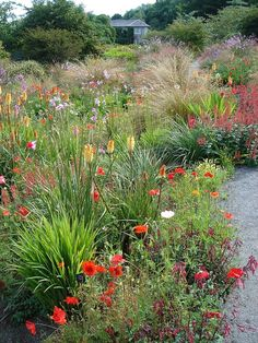 Image result for indigenous south african gardens on pinterest #ContemporaryGardenLandscaping