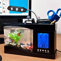 1000 images about office cubicle decor ideas on pinterest for Fish tank desk
