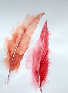 Red Feathers Fun Art, Cool Art, Irish Landscape, Red Feather, Orange Sky, Irish Art, Summer Garden, Large Art, Fine Art Gallery