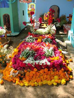 wedding colors and flowers... things change halfway 'round the world: Day of the Dead, Tepoztlan, Mexico