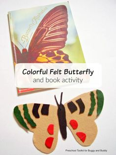 Felt Butterfly ABC Activity: Hands-on alphabet activity inspired by the children's book, The Butterfly Alphabet! Discover hidden letters in the butterfly designs and create your own beautiful butterflies. ~ Preschool Toolkit for Buggy and Buddy