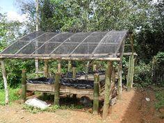 Construcción para lombricultura. Vereda Covaria, Charalá - Santander (CO). Jóvenes Rurales Emprendedores SENA.