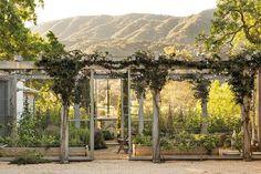 The garden at Patina Farm, the homse of Brooke & Steve Giannetti, in Ojai California. Garden Types, Formal Garden Design, Patina Farm, Palomar, Chicken Garden, Formal Gardens, Modern Gardens, Japanese Gardens, Small Gardens
