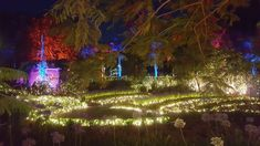 Enchanted garden, Roma St Parklands, Brisbane, QLD
