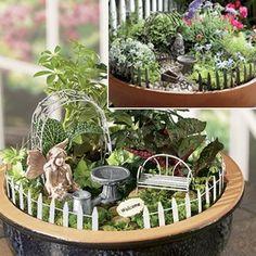 Miniture Garden Accessory Sets @ Fresh Finds
