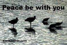 Peace be with you. Positive quote by Kim Hambor photographer kimhambor.com