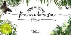 Bambusa Pro - Webfont & Desktop font « MyFonts