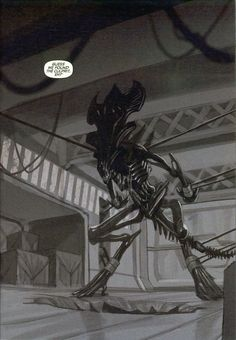 Top 10 Aliens Queens from the Alien vs. Included are the Queen Mother, Matriarch, Empress and other badass Queen Aliens Predator Series, Predator Alien, Alien Convenant, Alien Queen, Aliens Movie, Art Courses, Creature Concept, Monster Hunter, Sci Fi Fantasy