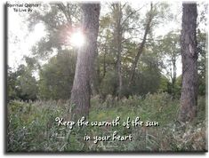 """""""Keep the warmth of the sun in your heart."""" Native American quote. Spiritual Quotes To Live By"""