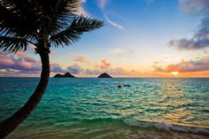 Image result for sunny holidays