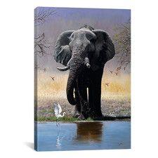 Wildlife Wall Art   Wayfair