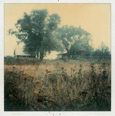 Andrei Tarkovski Polaroid Photograph