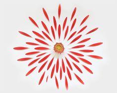 Arte com flores por Fong Qi We   Criatives   Blog Design, Inspirações, Tutoriais, Web Design