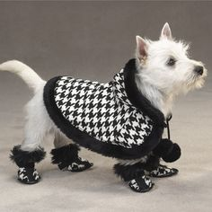 Dog Cape, Zack & Zoey Houndstooth Dog Cape