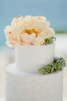 Vanilla Cake, Wedding Cakes, Desserts, Food, Wedding Gown Cakes, Tailgate Desserts, Deserts, Wedding Cake, Meals