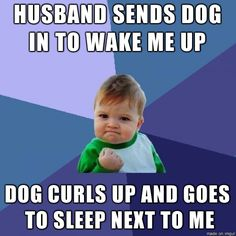 In your face, morning person! - Imgur