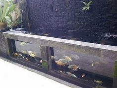 Image from http://www.homeandlandscapingdesigns.com.au/wp-content/uploads/2011/04/Koi-glass-pond.jpg.