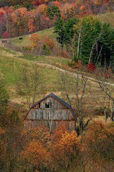 Barn #provestra
