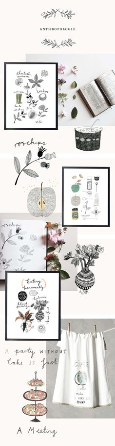 Ryan Frank Illustration -Anthropologie