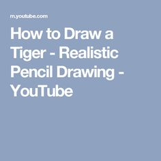 How to Draw a Tiger - Realistic Pencil Drawing - YouTube