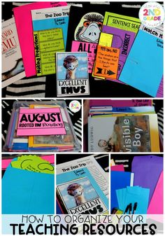 Teacher Organization:  How to Organize your Teaching Resources and Curriculum