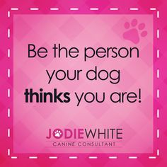Be the person your dog thinks you are!  www.jodiewhite.co.uk #positivedogtraining #jodiewhite