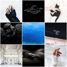 """Leo Slytherin Moodboard: Slytherin Leos can be either very good, or very bad. At their best, they exemplify all that """"nobility"""" is made of: confidence, openness, charm, initiative, generosity of spirit, wisdom, judgment, and poise. At their worst,..."""