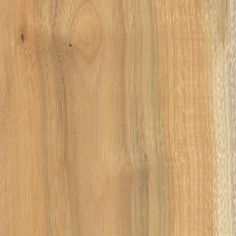 Buckthorn (Rhamnus cathartica)