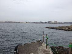 江ノ島から藤沢辻堂方面を望む