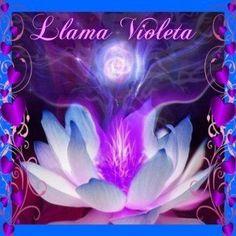 Llama Violeta. Una maravillosa e incondicional Amiga