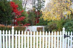 Autumn leaves & picket fence, via Flickr.