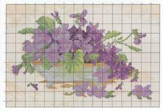 Gallery.ru / Фото #10 - fiolki(violet's) - sabka