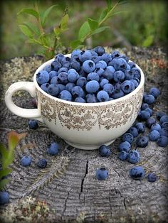 fresh blueberries...