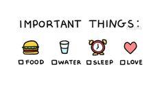 Important things: food, water, sleep, love